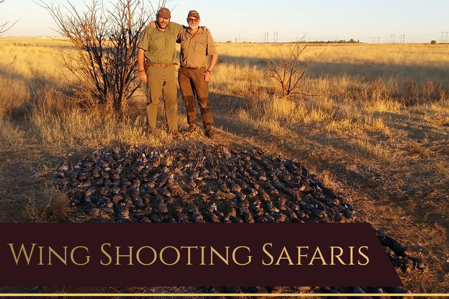 Dries van Coller Wingshooting Safaris